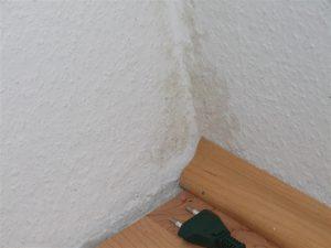 Wohnraumschimmel in einer Außenwandecke (unten)