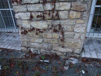 Wandabschnitt aus harten Kalksteinen ohne Putz
